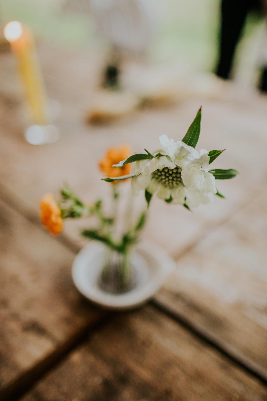 Spring Woodland Wedding at Springfield Distillery in Halifax, Virginia