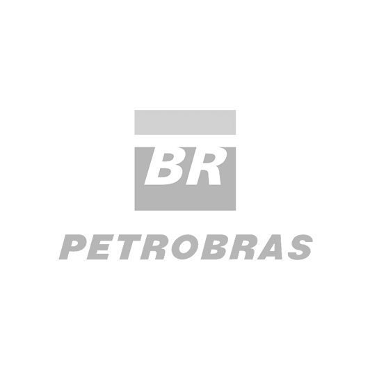 Petrobras@2x.png