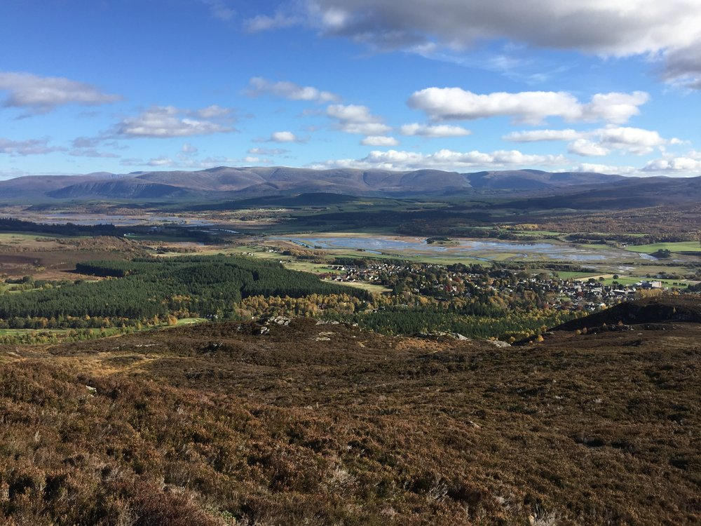 Walking/running - There's a great set of community paths in and around the village where you can explore town and the surrounding woodlands. We recommend a walk (or run) up our local hill, Creag Bheag, where you will be rewarded with a 360 degree panorama of the Mondaliath and Cairngorm mountains. There's even a wee stone shelter at the top for having a picnic and taking in the views up and down the valley. For a comprehensive guide to local walks and walking/hiking in the Cairngorm check out the Walk Highlands webpage.We are both keen hill runners and can happily recommend some great trails. If you are up for racing up and down the hills there are lots of trail and hill races in the area. Check out Scottish Athletics and Scottish Hill Racing for upcoming events. In the summer months we recommend entering the hill running races at local Highland Games'- a great way to remember your Highland Holiday (honest!).