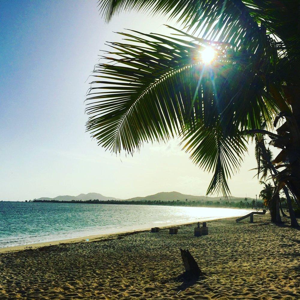 Photo Credit: Danica Zupic, Esperanza beach Vieques, Puerto Rico