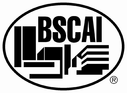 BSCAI-Logo.jpg