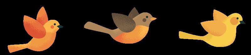 3-birds.png