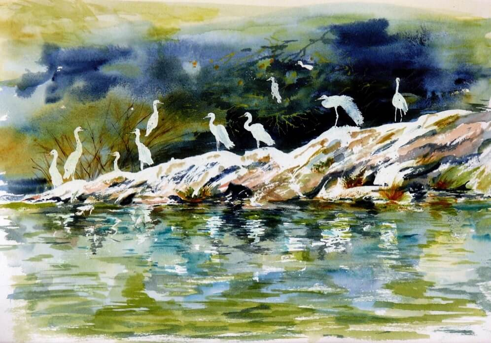 Nile Egrets by Peter Lawrence