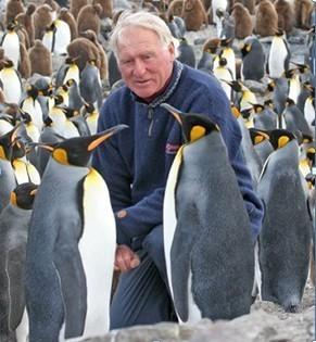 sparks_penguins.jpg