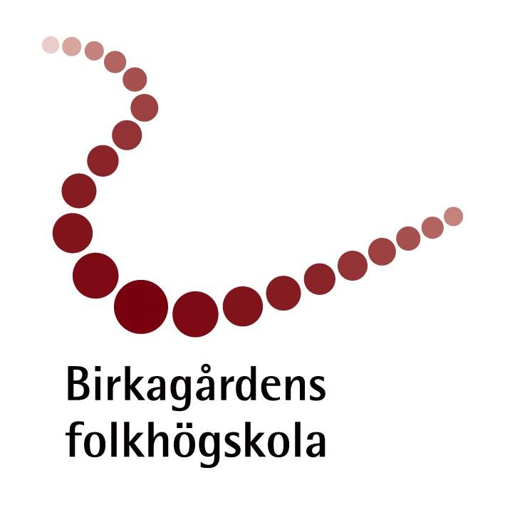 """- Föreläsning för personal våren 2018 på Birkagårdens folkhögskola.""""Föreläsningen fick mig att se och förstå mitt eget användande av digitala verktyg."""" /Ann, lärare Birkagårdens folkhögskola"""