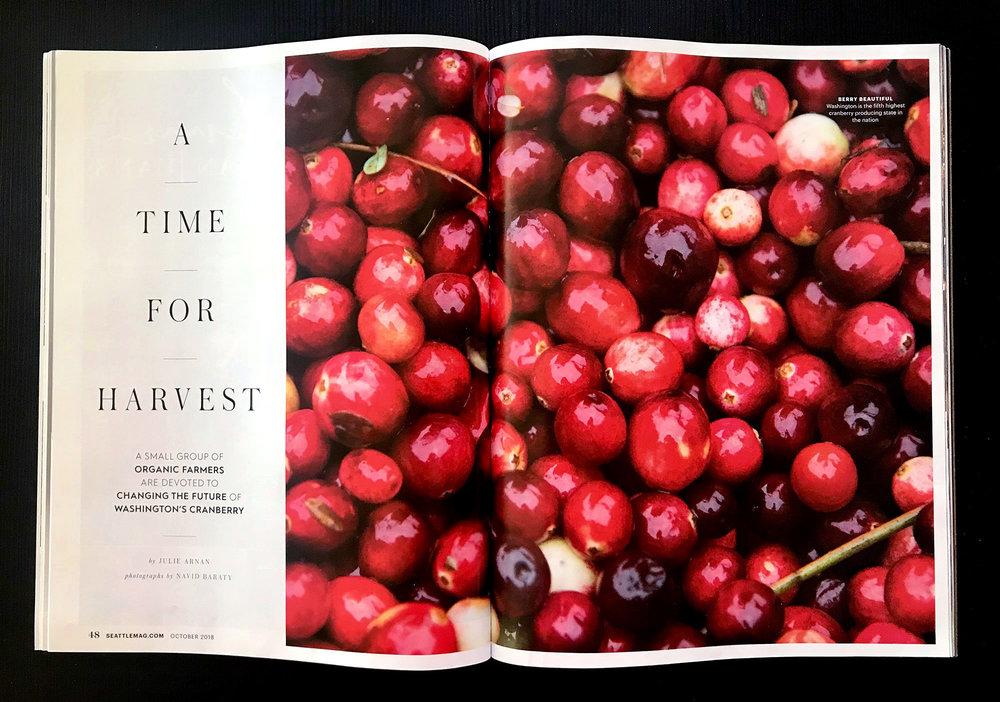 cranberries-4.jpg
