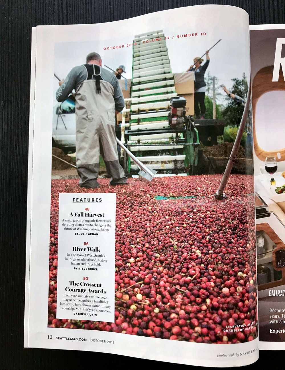cranberries-5.jpg