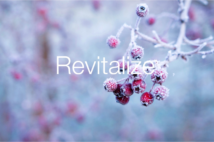 Revitalize-Winter-berries.jpg