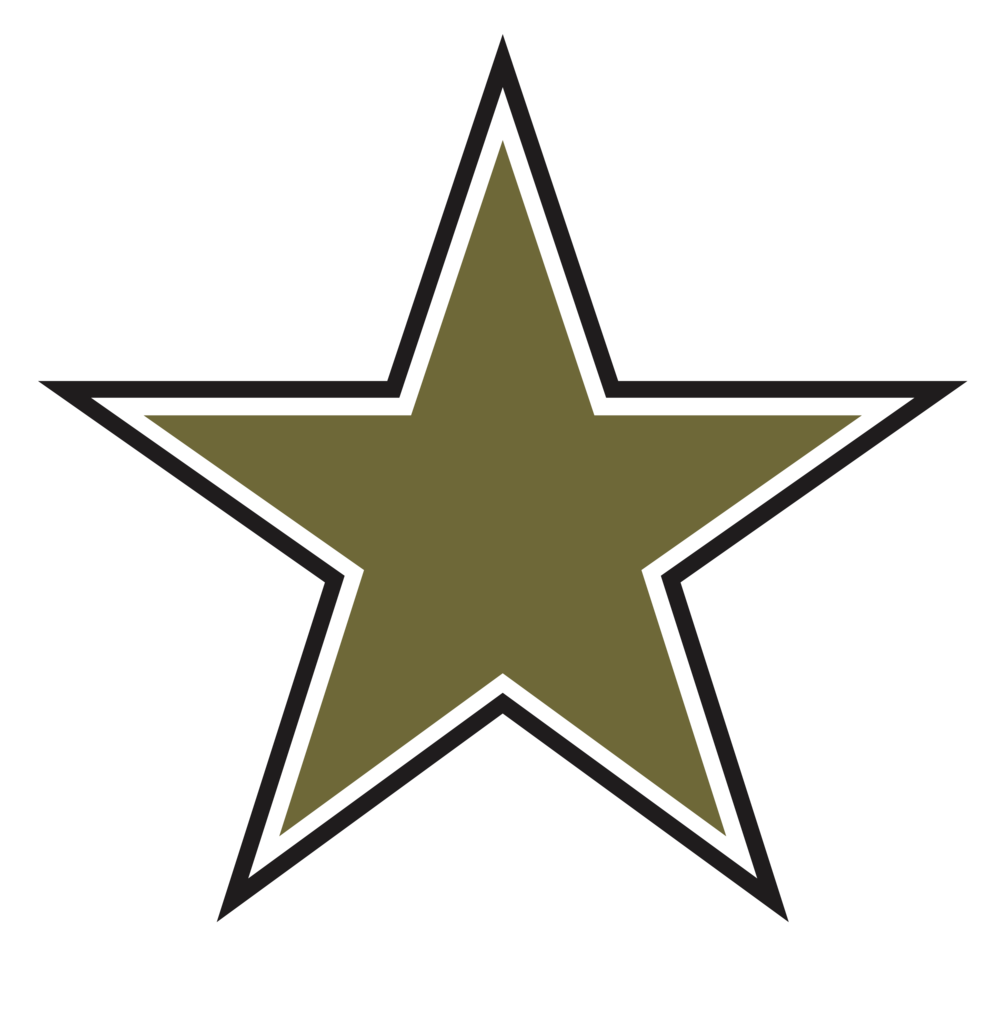 MJR [Converted]_star_02.png