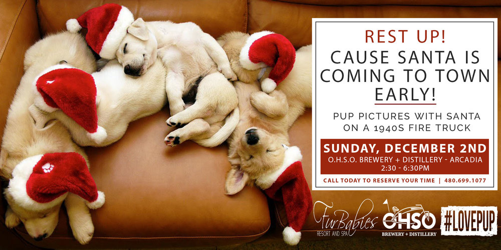 Dog Pictures with Santa Scottsdale AZ