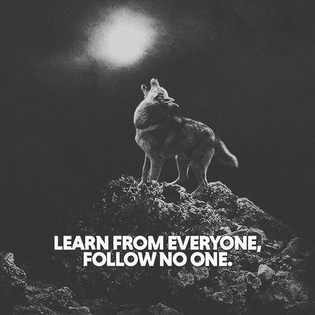 ▪️▪️LEARN FROM EVERYONE 🌓FOLLOW NO ONE▪️▪️ . . ✨⚡️GET FREE DOWNLOADS!⚡️✨ . ⚡️⚡️LiNK iN BiO⚡️⚡️ . 👉👉 @RAGEONTHETRACK 👈👈 . 👉👉 @THE.RAGE.CREW 👈👈 . . 🌑🌕 WWW.RiLEYRAGE.COM 🌕🌑 . . ☑️#rageonthetrack #duality #yinyang #5d #newearth #newearthtribal #earthwarrior #lightwarriors #lightwarriorsunite #earthwarriorsunite #lightworker #polarity #tribalmusic #tribalbeats #beatsforlease #newartist #newartistalert #newmusicalert #unsignedartist #unsignedrapper #upcomingrapper #upcomingartist #truthmovement #conspiracytheory #conspiracyfact #truth #allisone #unity . . #Repost @spirit_soul_warrior