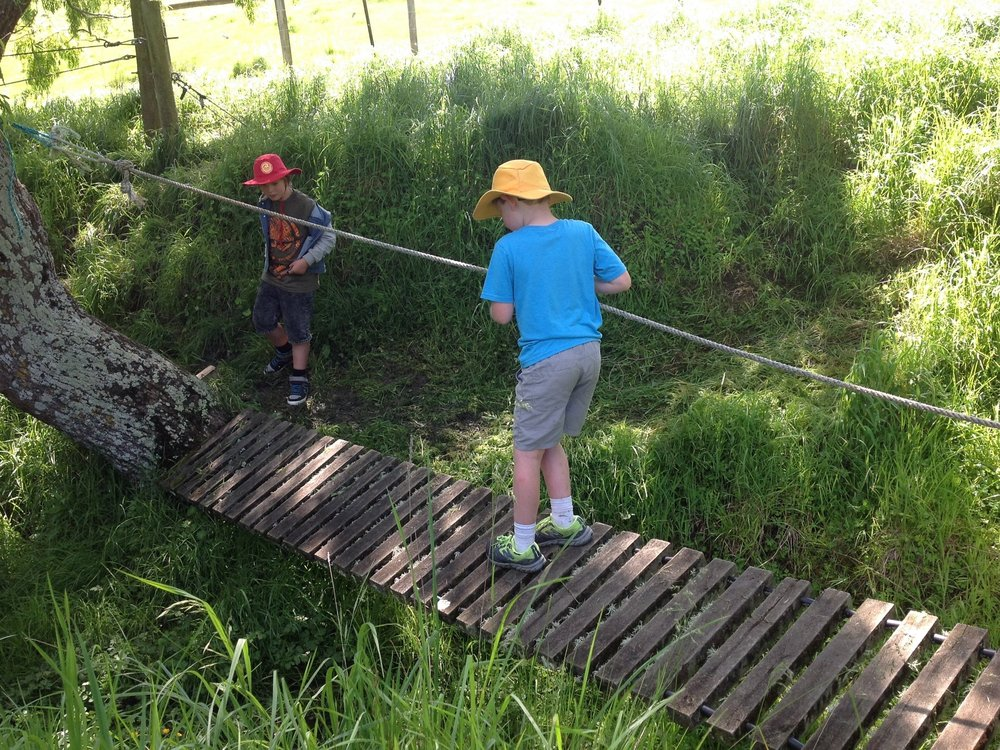 Confident - RangatiratangaOur children are able to take risks, to be leaders and role models. They recognise that mistakes are part of learning and that stepping out of your comfort zone can take you to new places in your learning.