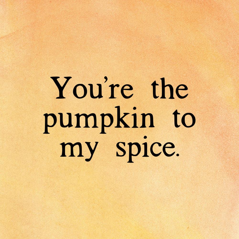 pumpkin to my spice