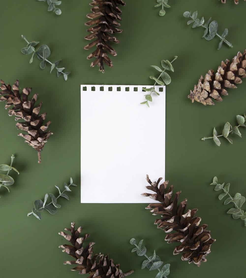 green pinecones.jpg