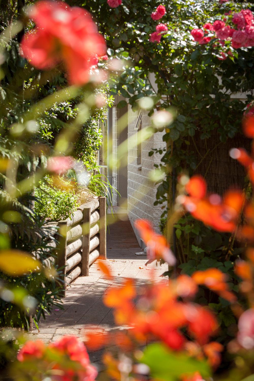 Te Moenga_Chalets_Courtyard to Chalets_0515.jpg