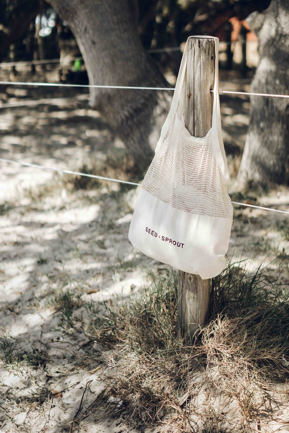 Keira-Mason-Seed-and-sprout-cotton-bag.jpg