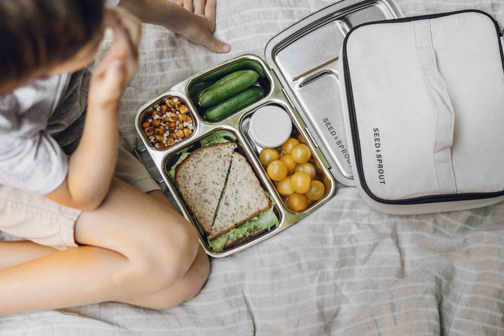 Keira-Mason-Seed-and-sprout-sandwich-in-lunchbox.jpg
