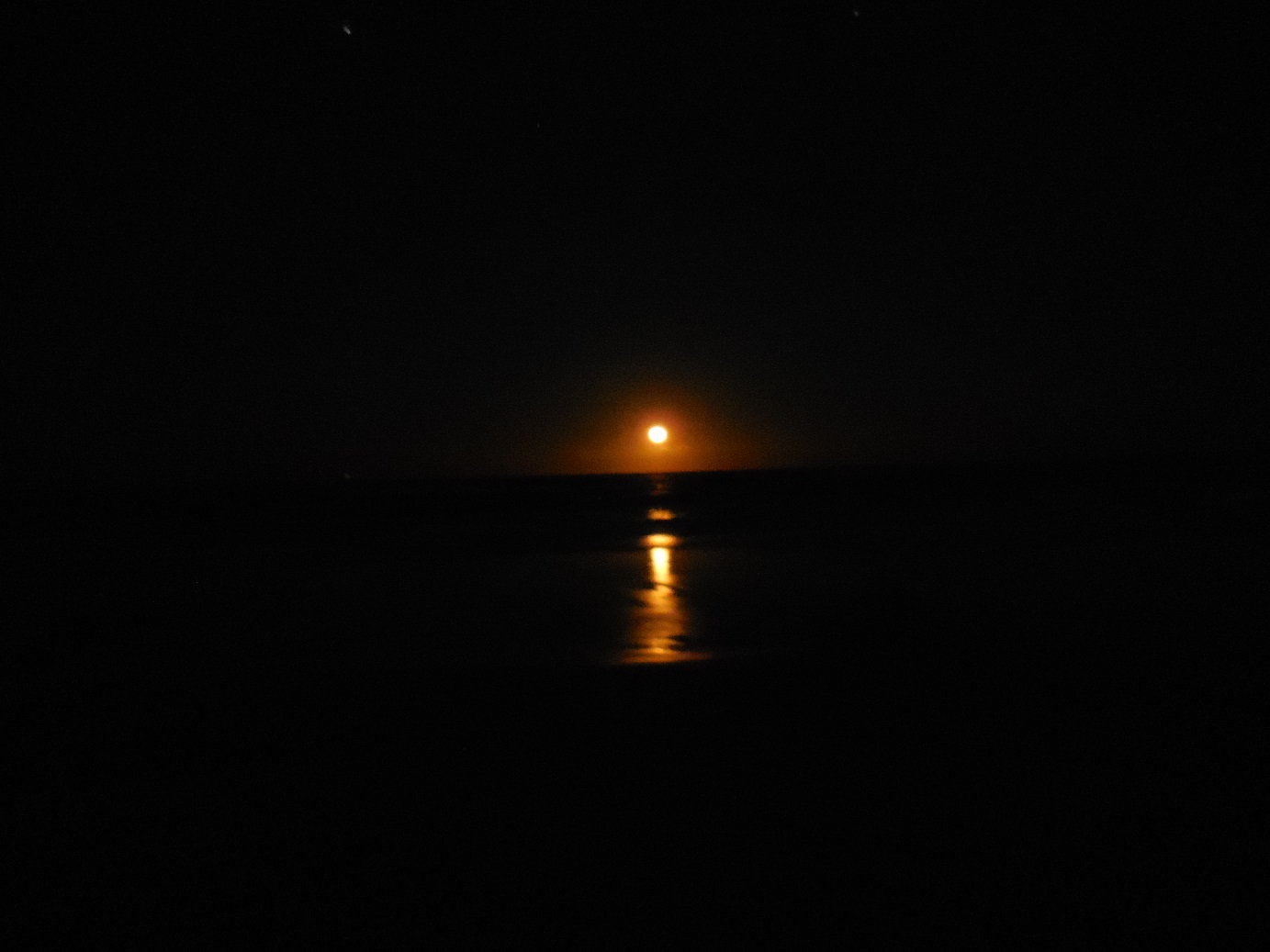 yes it is the moon in gnarly orange!