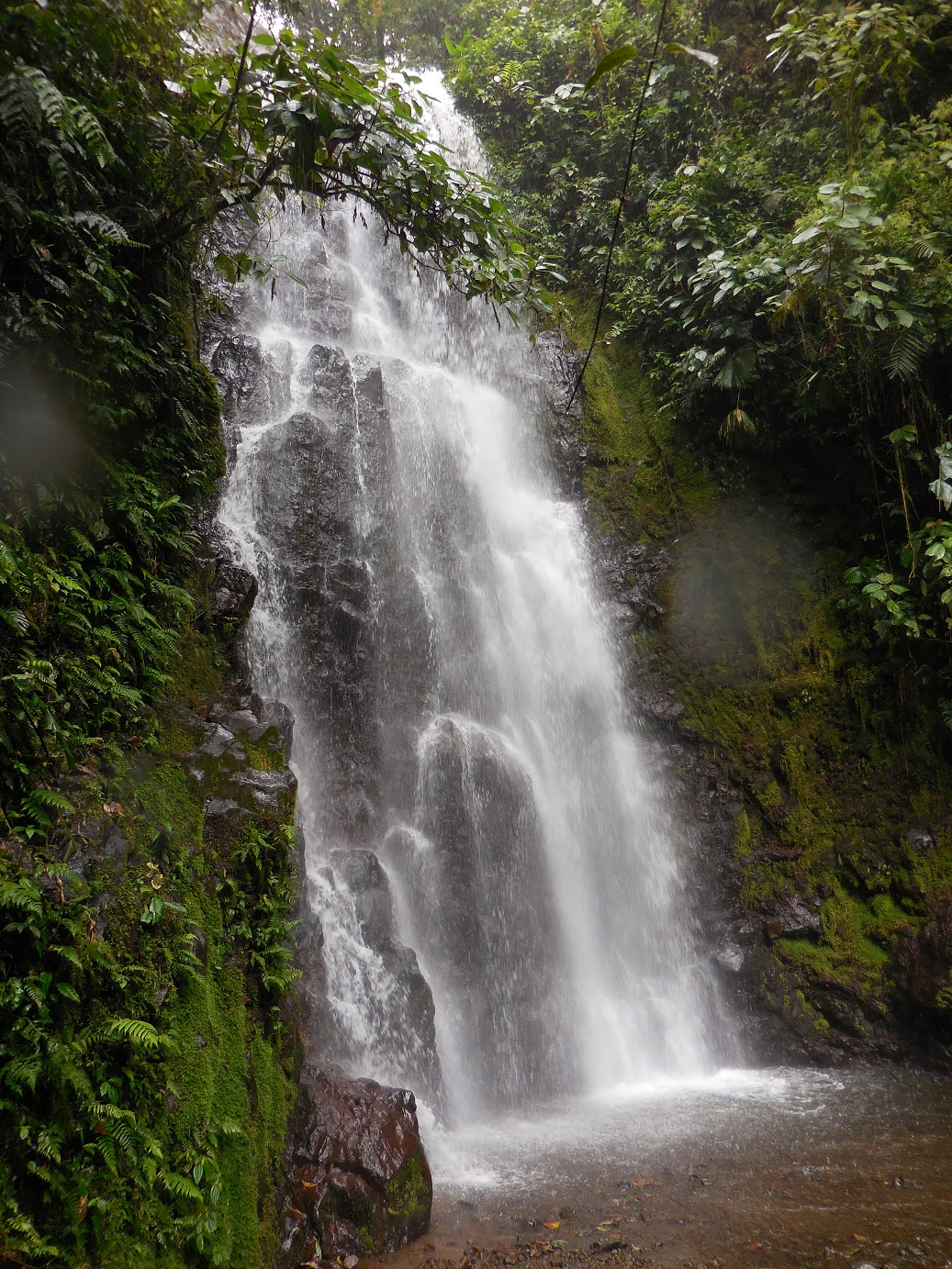 Waterfall at Arenal, too cold to try, but beautiful!