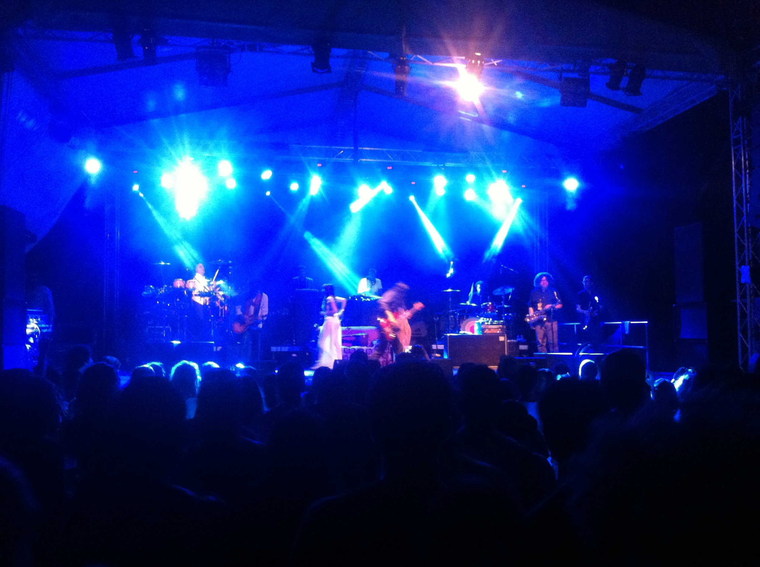 Thievery Corporation at Jungle Jam
