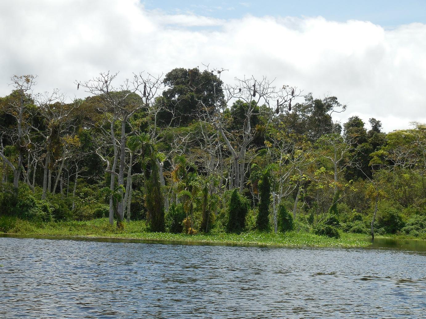 Garzacocha Lagoon