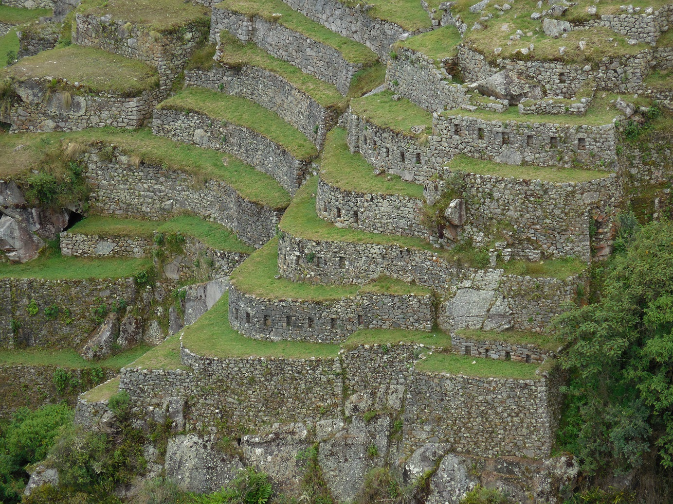 Foundation Terraces
