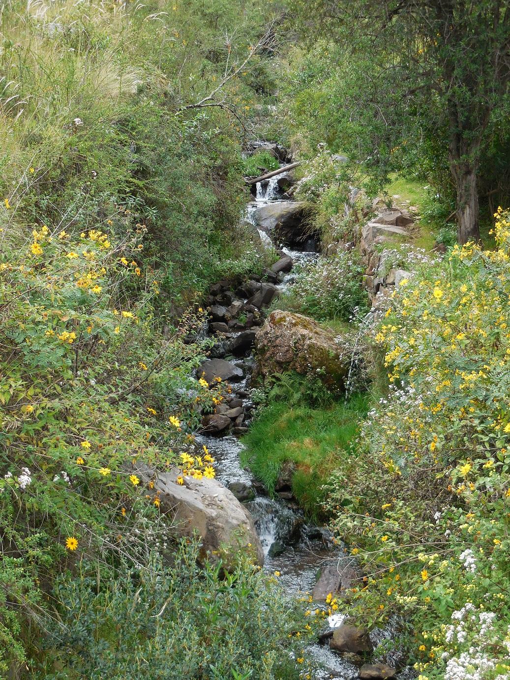 Pisac town stream