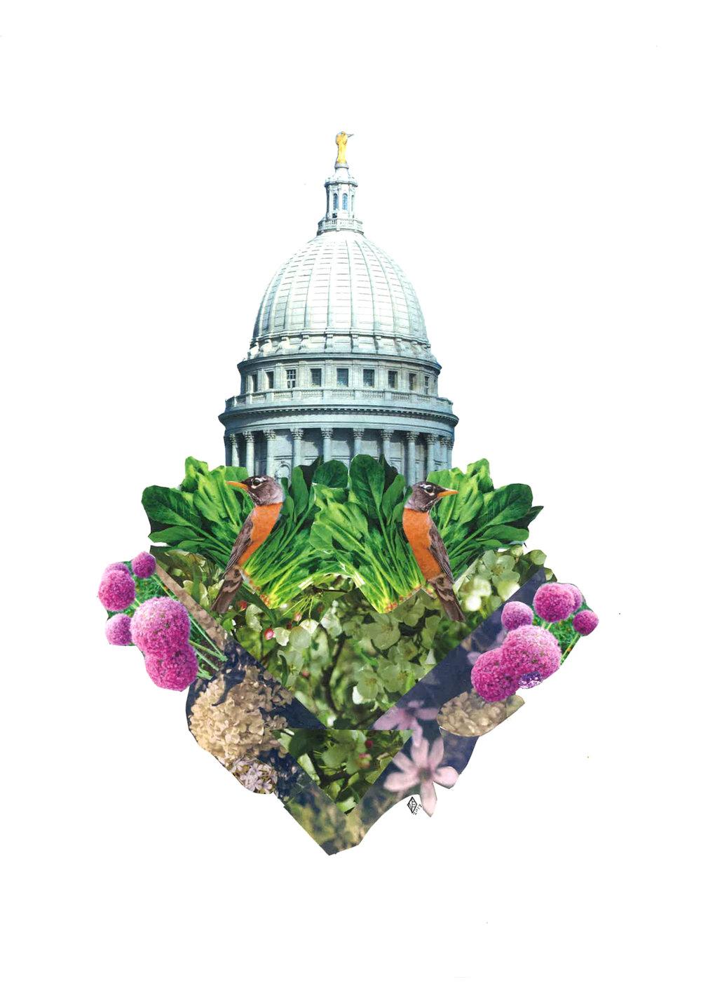 Capitol Seasons: Spring, 11x14, 2017