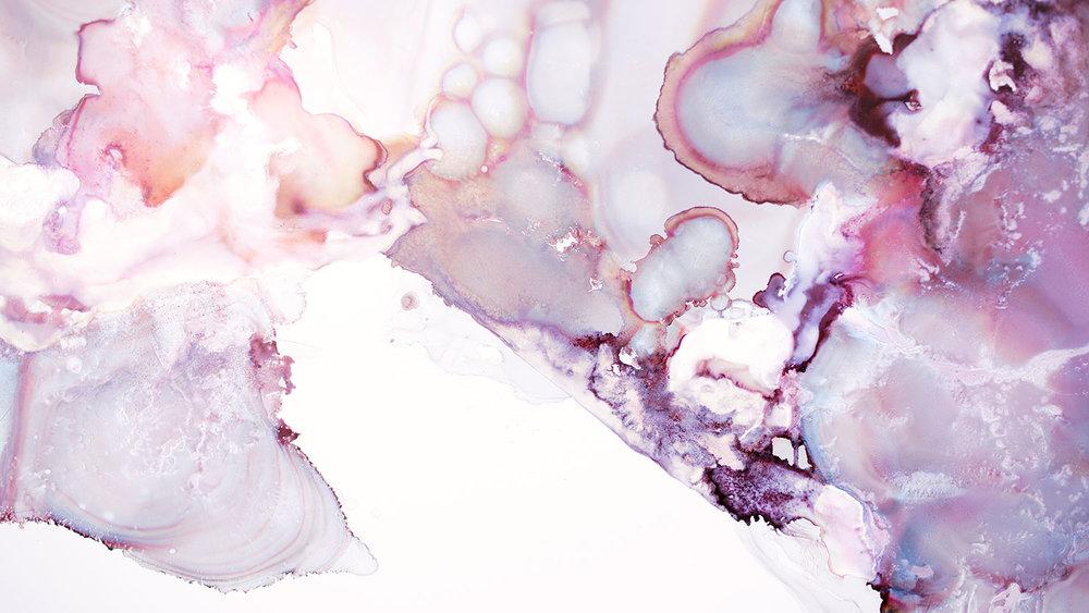 surface1_03_8536-4_35mm-7.jpg