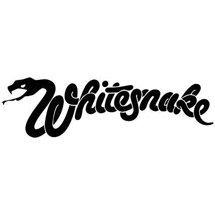 Lighting Technician for Whitesnake - 1984 -