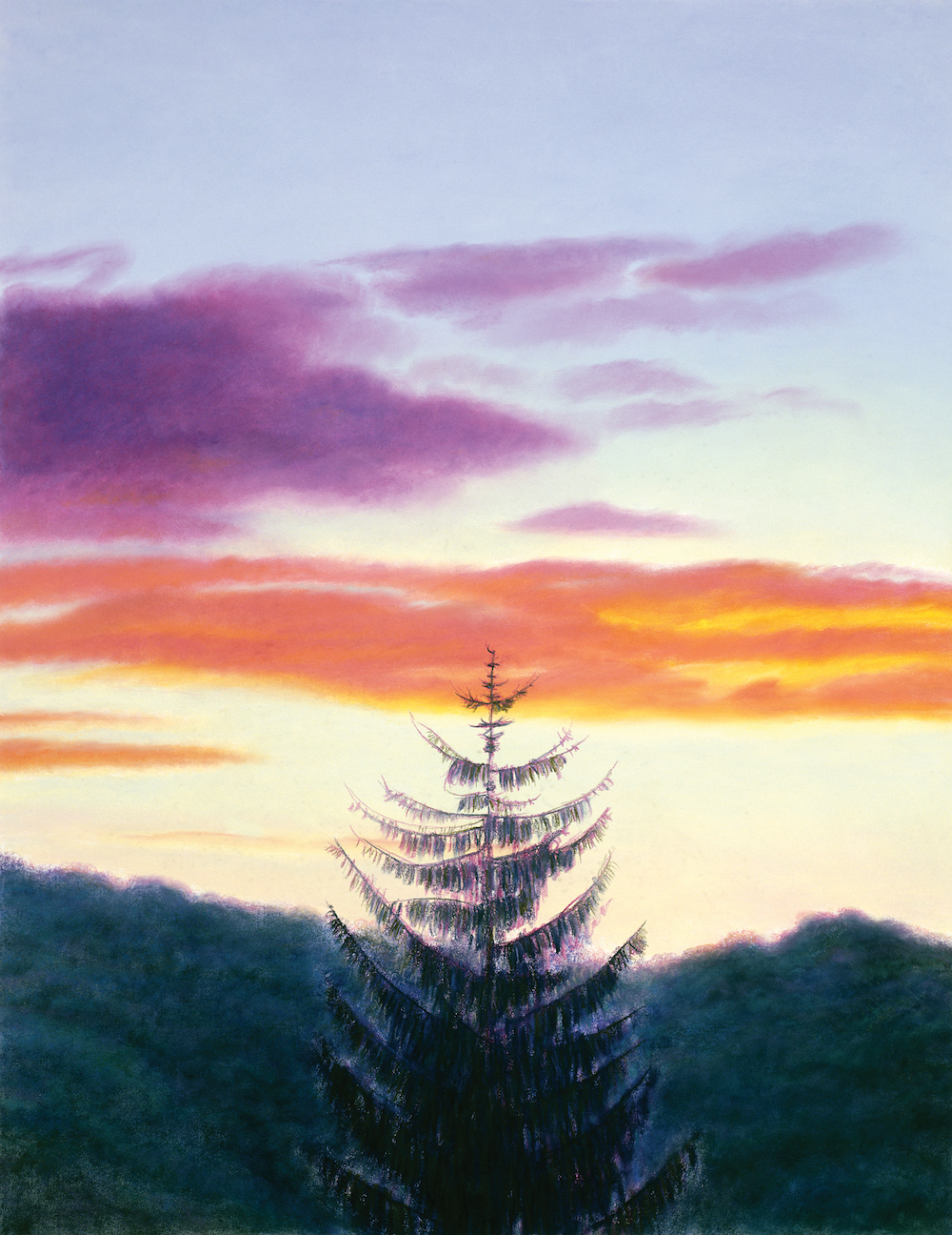 End of Summer Pine at Sunset, Pastel, 47 x 36 1/2""
