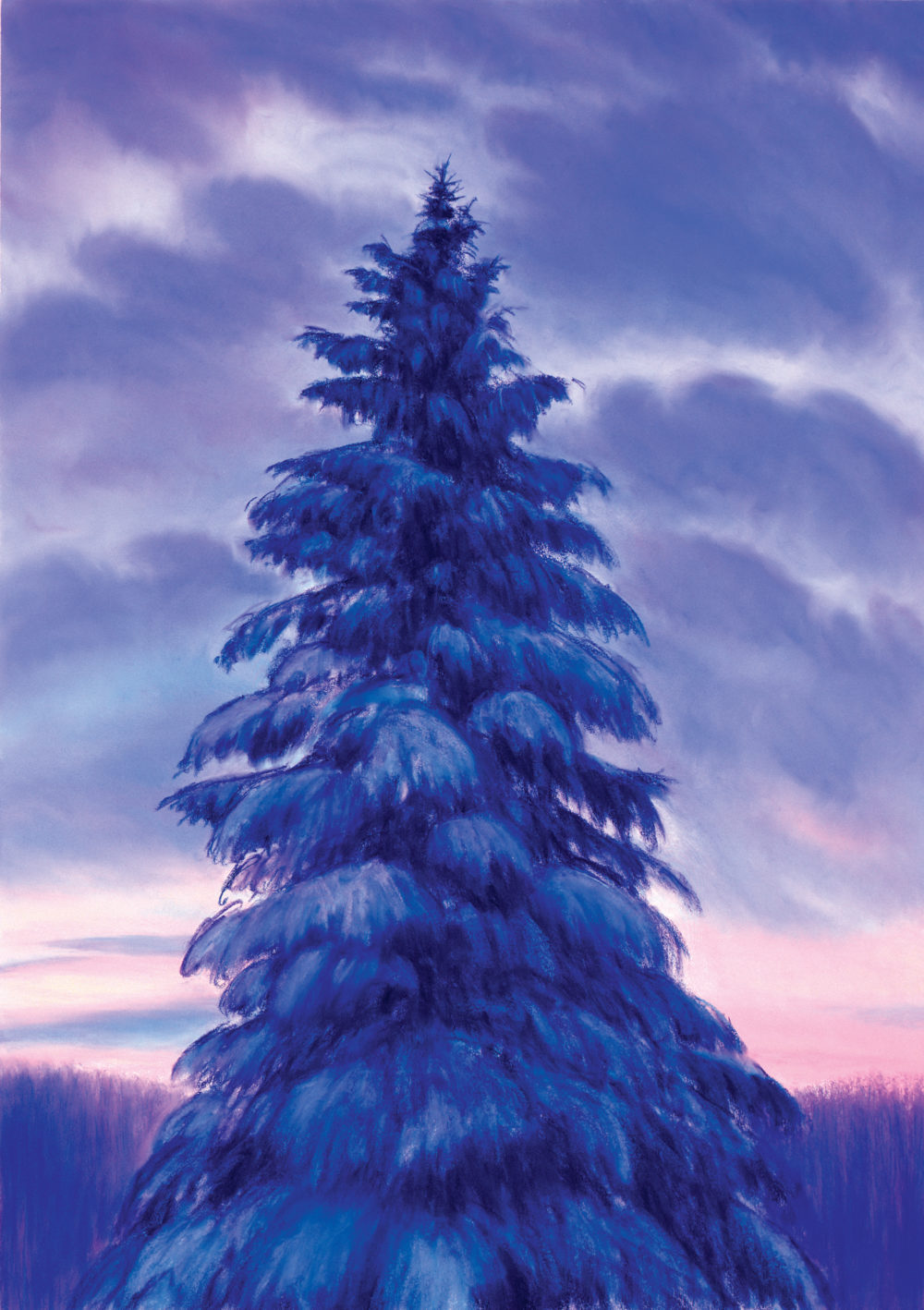 "Winter Pine, Dusk, Pastel, 47 x 34"""