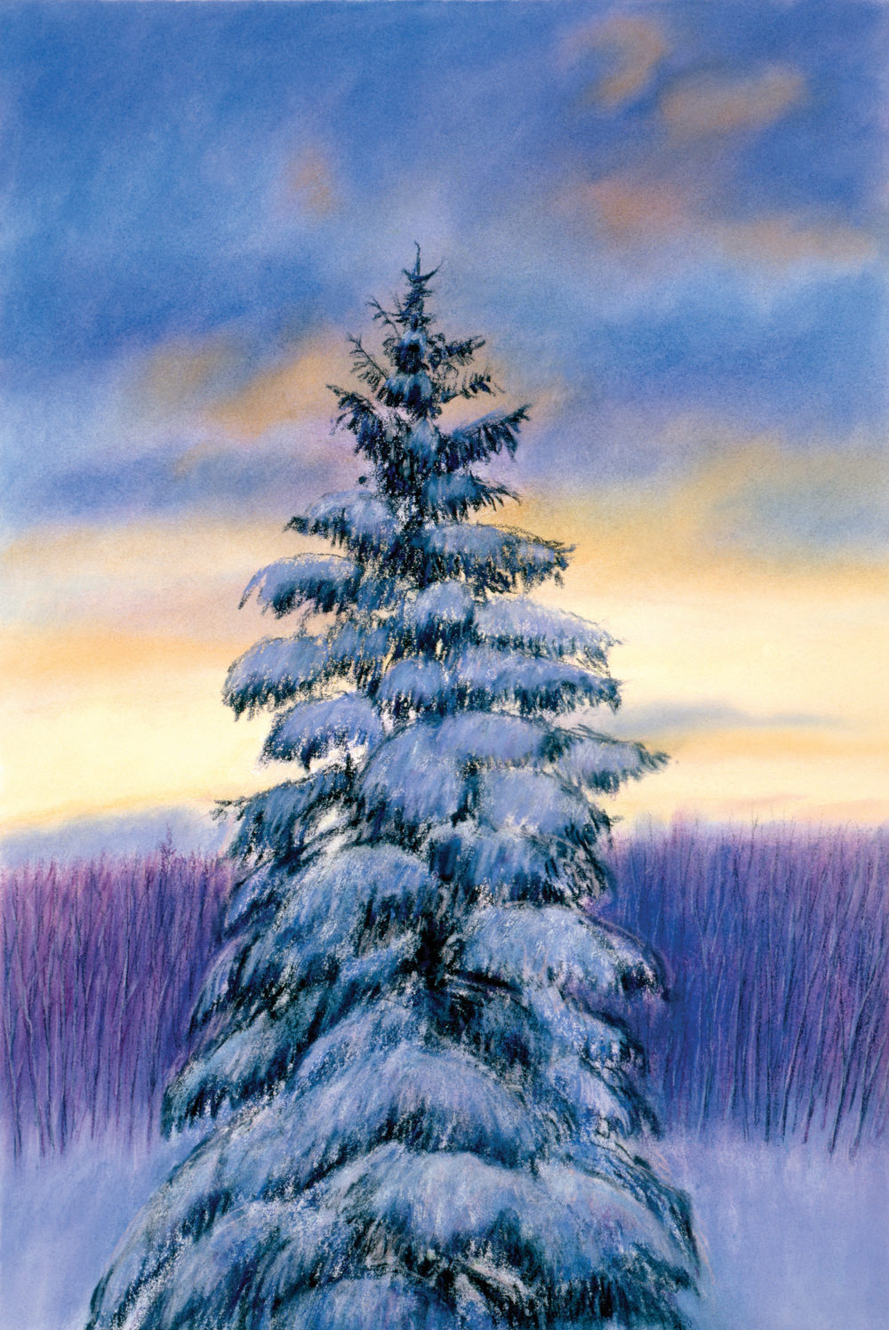 Winter Sunset Pine, Pastel, 21 x 14""