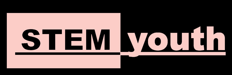IGCSE CS Theory 2019 — STEMyouth