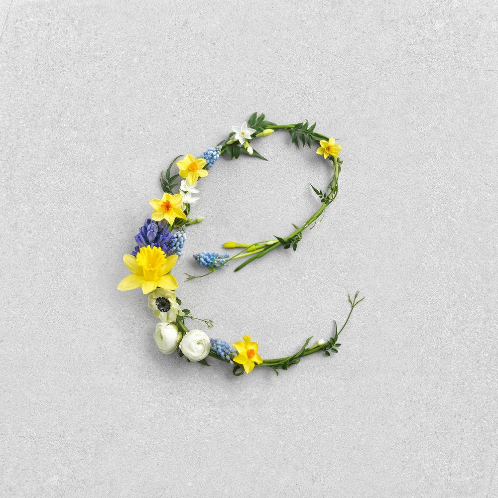 WAITROSE_SPRING_9.1.18_E_For_Easter_Flowers - 389.jpg