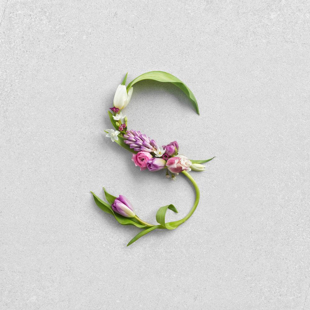 WAITROSE_SPRING_9.1.18_S_For_Spring_Flowers - 416.jpg