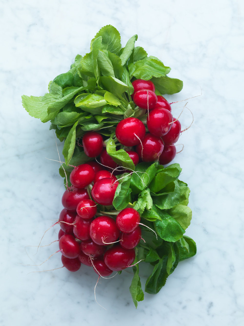 Waitrose_Bestcustomer_Radishes_21.2.18 - 680.jpg