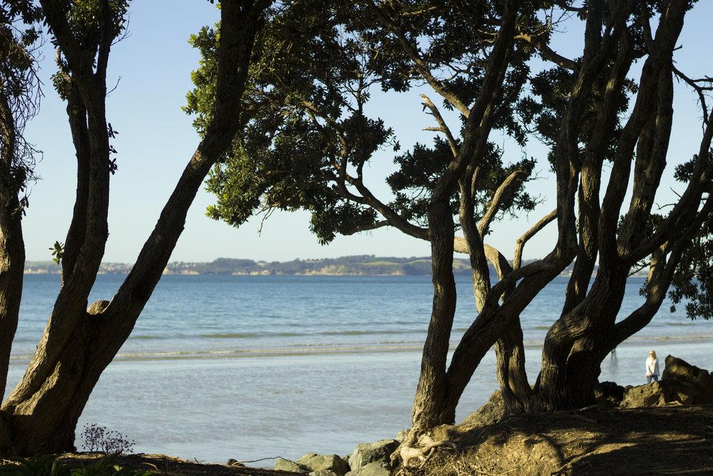 blog Orewa Beach 8.jpg