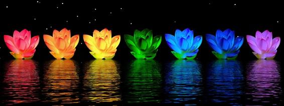 Chakra-Rainbow-Lotus.jpg