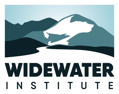 WidewaterInstitute_logo_color.png