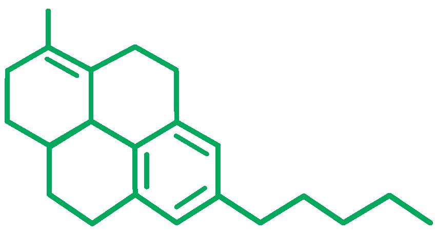 THC / Tetrahydrocannabinol Molecule the most wildly found cannabinoid.