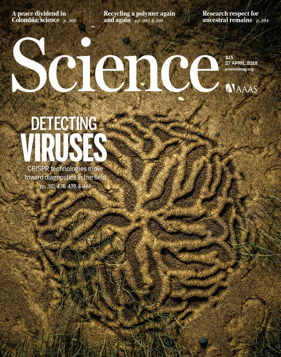 Science cover.jpg