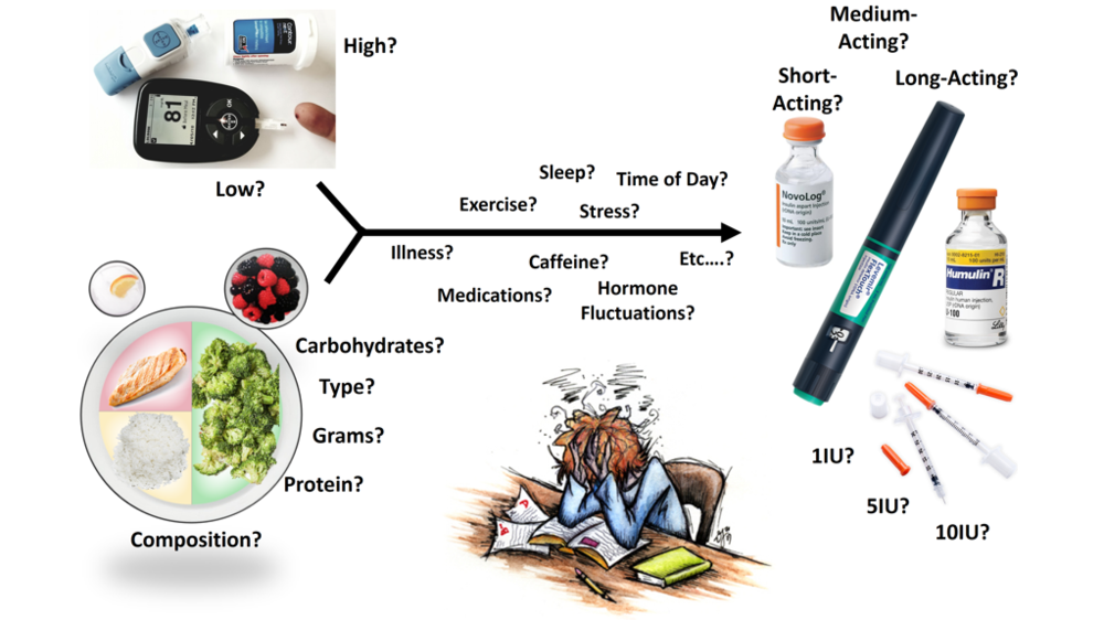 Figure 12   Representative image of what goes into getting glycemic control . 1) Test blood glucose level and determine if it is high, low, or normal. 2) Determine the composition of your meal including grams of carbohydrates and protein, type of carbohydrates, etc. 3) Incorporate all confounding factors influencing glycemic control including exercise, sleep, stress, illness, time of day, caffeine, hormonal fluctuations, etc. 4) Take the information from your blood glucose and meal and determine how much insulin sensitivity will fluctuate due to this combination of lifestyle factors, which change daily. 5) Determine the type of insulin and quantity, and hope you get it right or you will experience hypoglycemia or hyperglycemia and require glucose or more insulin, respectively.