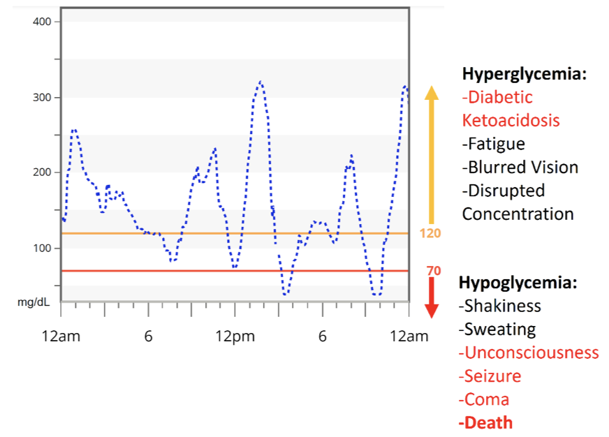 Figure 10   Type-1 Diabetic 24-Hour Blood Glucose Tracing.  Taken from Section 1-Figure 9 illustrating daily blood glucose trends and subsequent symptoms of hyperglycemia and hypoglycemia.