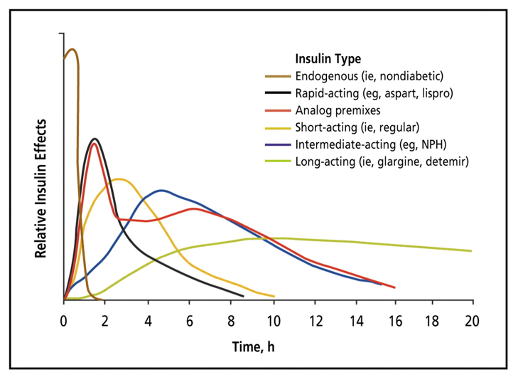 Figure 5 Estimated Pharmacokinetics of Endogenous and Exogenous Insulin.  Insulin's onset, peak, and duration varies tremendously depending on the type of insulin. There is also different pharmacokinetics across individuals. While not illustrated in this figure, other factors influence insulin's kinetics (absorptions & sensitivity; Section 1). Figure 2 from (Freeman, 2009).