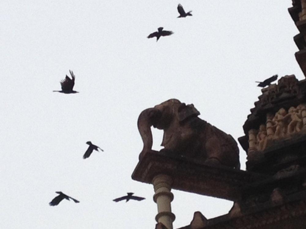 elephant stands guard at the Khajuraho temples