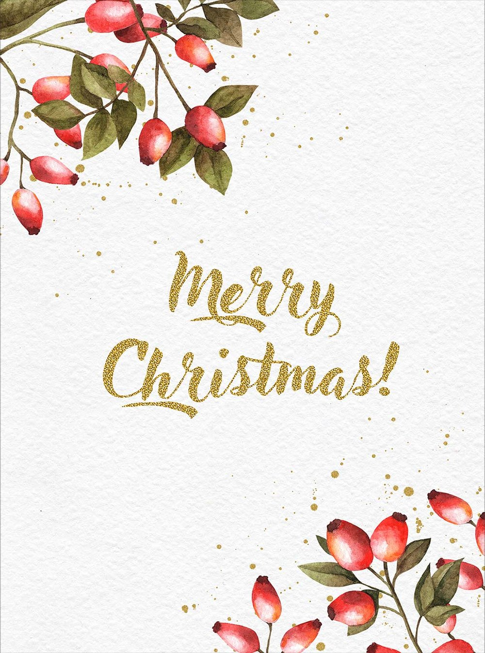 christmas card berries.jpg