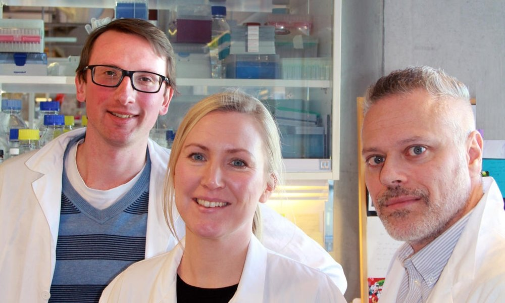 Adrian Drazic, Henriette Aksnes, and Michaël Marie made a sensational discovery in cell biology.    Photo: Margarethe Bittins. Copyright: UiB