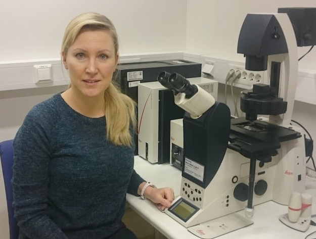 The microscope has been an important tool in this study. Researcher Henriette Aksnes finds it exciting to study protein properties by colouring them with fluorescent substances so that they are visible under the light microscope. In combination with other methods, the microscope is a valuable tool to reveal the important tasks that the NAT enzymes perform in the cell and the organism