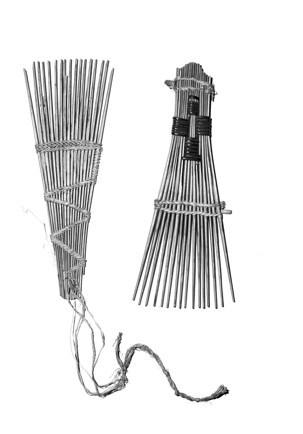 Combs from Congo.jpg